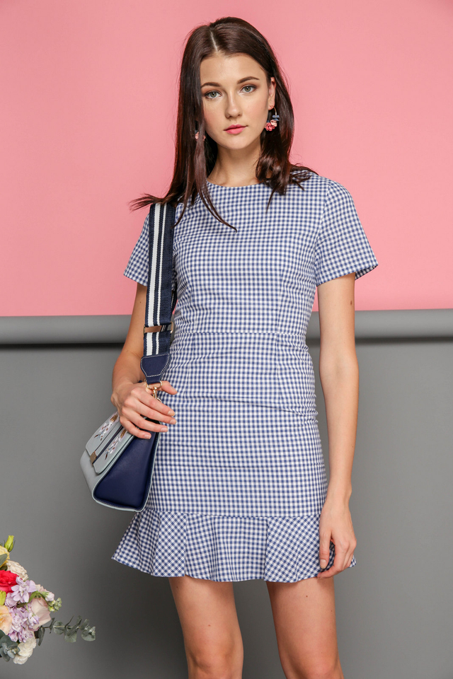 Gianna Dropwaist Dress in Gingham