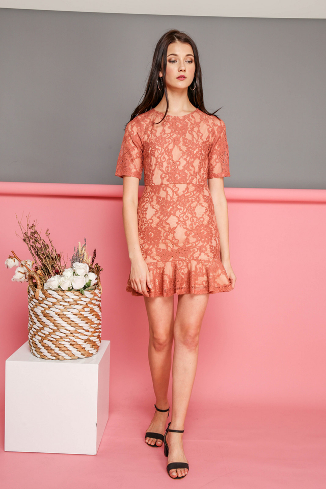 Brielle Lace Dropwaist Dress in Terracotta