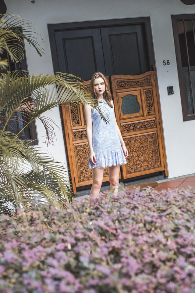 Tazia Lace Dropwaist Dress in Periwinkle (L)