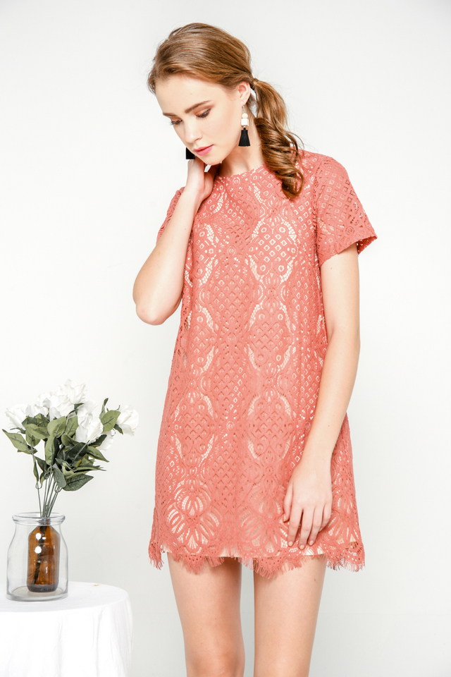 Sherly Lace Shift Dress in Terracotta