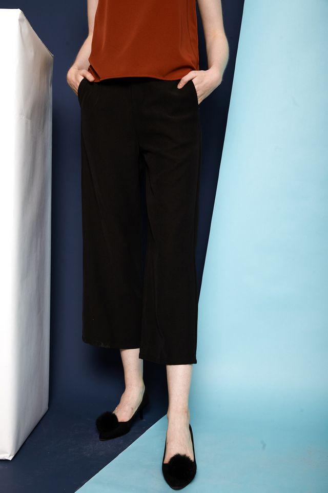 Juneau Straight Wide Leg Pants in Black