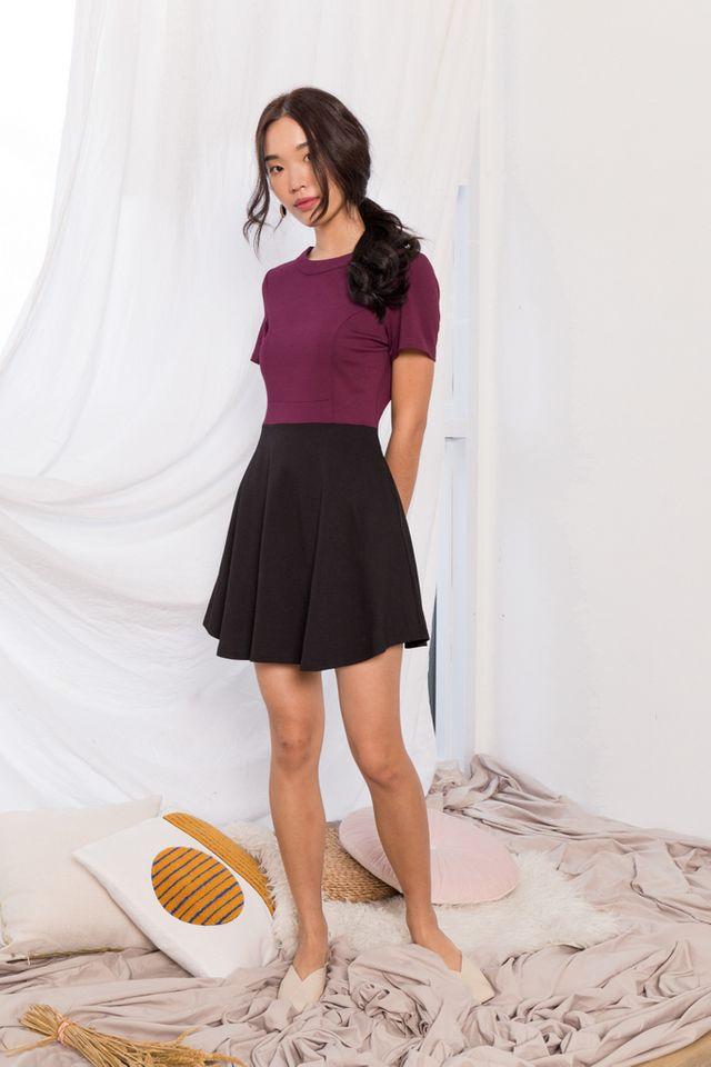 Vanetta Colourblock Skater Dress in Plum