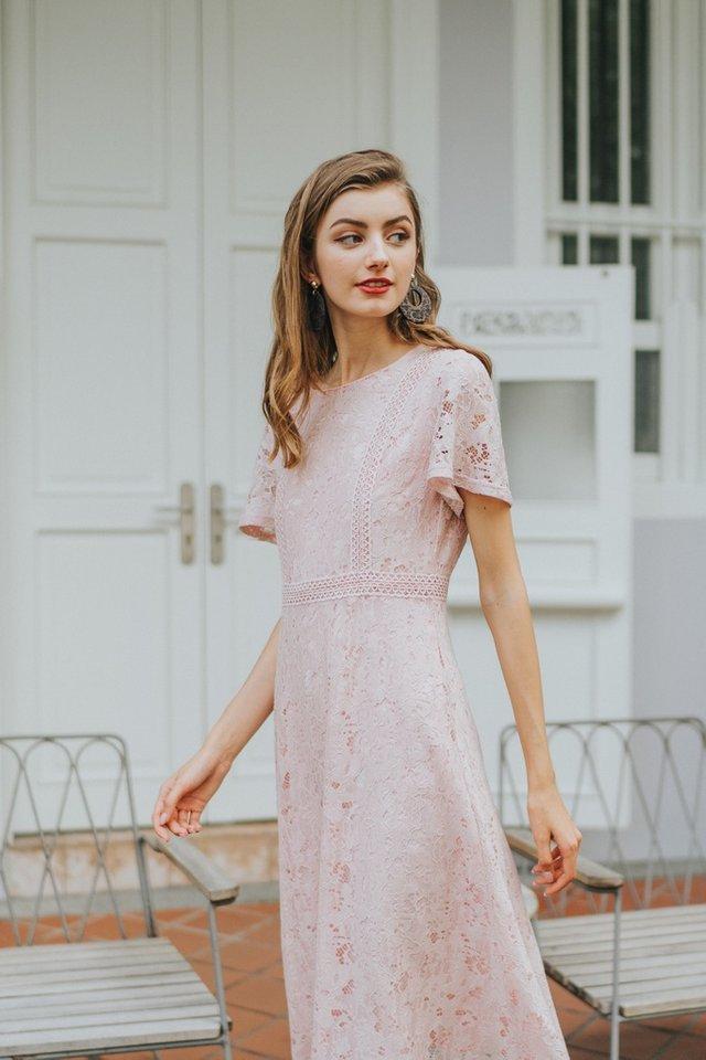 Brenda Premium Lace Sleeved Midi Dress in Pink (XS)