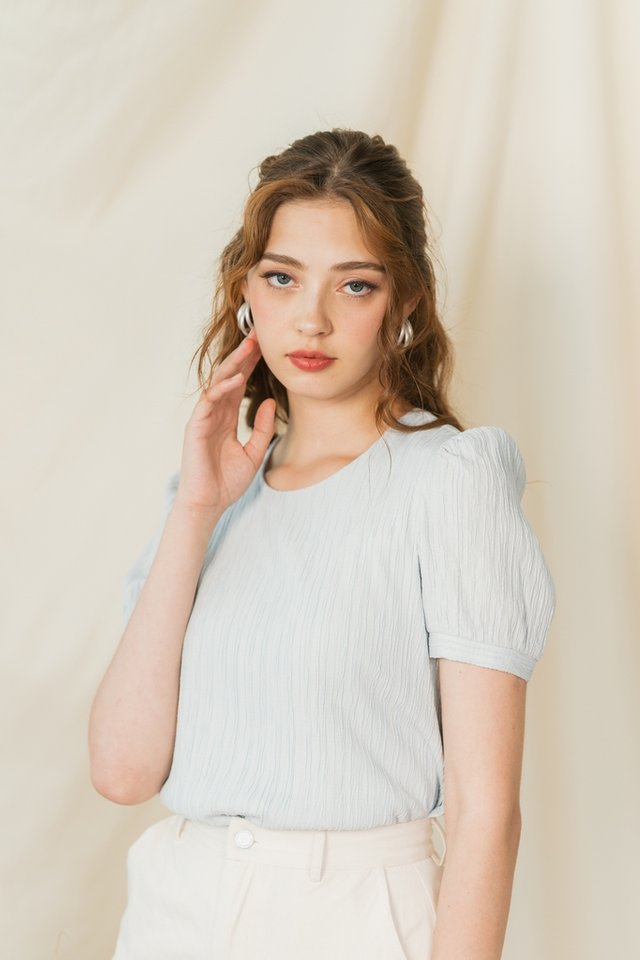 Shanell Textured Puffed Sleeves Top in Powder Blue